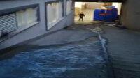 Esenyurt'ta 'mavi su' bu kez iş yerlerineaktı: Sokak köpekleri içip ölüyor