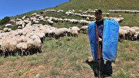 Tuncelili gencin büyük başarısı: Çobanlık yaparken Robert Lisesi'ni kazandı sırada Tilburg Üniversitesi var