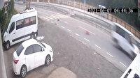 Rize'de köpeğe minibüsle çarpıp ölümüne neden olan sürücüye 966 TL ceza