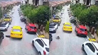 İstanbul'da sarı taksi dehşeti: Köpeği ezen vicdansız şoför arkasına bile bakmadan kaçtı