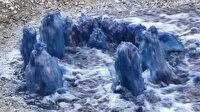 Esenyurt'ta yine mavi su kabusu: Rögarlardan fışkırdı vatandaşlar tedirgin etti