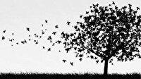 Geçmişe yolculuğun şiiri: Hüzün Saati