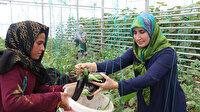 Türk ve Suriyeli kadınlar güçlerini birleştirdi: Kurdukları serayla hem üretim hem satış yapıyorlar