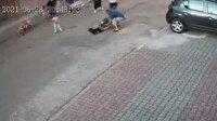 İstanbul'da yine başıboş pitbull dehşeti: Küçük çocuğu ölümden mahalleli kurtardı