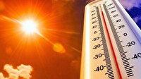 Yeni Zelanda en sıcak haziran ayını yaşadı