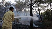İzmir Foça'daki orman yangını kontrol altına alındı