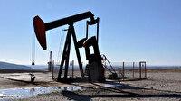 TP'nin Adıyaman'daki sahada petrol arama ruhsatı süresi uzatıldı
