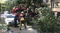 Ünlü oyuncunun otomobilinin üstüne ağaç devrildi
