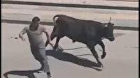 Boğa firarda: Sahibinin elinden kaçtı kafeteryaya daldı