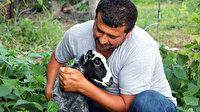 Amasyalı çiftçi annesinin kabul etmediği kuzu 'Kara Kız'a evladı gibi bakıyor