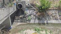 Esenyurt'ta dereye akan kirli sular ile atıkla: Çevre sakinlerini rahatsız ediyor