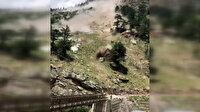 Arabanın içindeyken üzerlerine kaya parçaları düşen 9 turist hayatını kaybetti
