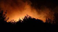 Kozan'da orman yangını: Faciadan dönüldü