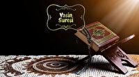 Yasin Suresi Okunuşu: Yasin Suresi Arapça oku, dinle, fazileti