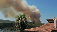 Kâbus büyüyor: Bodrum ve Didim'de de orman yangınları çıktı