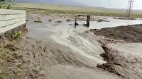 Ağrı'da sağanak sele dönüştü: Ev ve tarlalar sular altında kaldı
