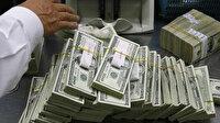 IMF'den 650 milyar dolarlık onay: Koronavirüsle mücadelede kullanılacak