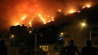 Uzmanlar açıkladı: Orman yangınları sonrası büyük tehlike kapıda