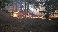 Mehmetçik görevlendirildi: Milli Savunma Bakanlığı'ndan Isparta ve Denizli'deki orman yangına destek