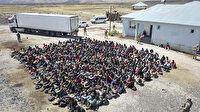 Tır dorsesinde 300 düzensiz göçmen yakalandı