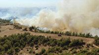 Tarım ve Orman Bakanı Pakdemirli açıkladı: 2 ildeki yangınlar kontrol altına alındı