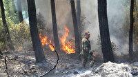 Azerbaycan'dan yangınlarla mücadele için ek ekip