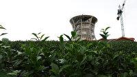 'Çay Çarşısı' gün sayıyor: Sadece göze değil buruna da hitap edecek