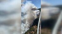 Köyceğiz'de devam eden orman yangınına havadan ve karadan müdahale sürüyor