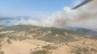 İzmir Foça'da orman yangını: Alevlerin etrafı çevrildi
