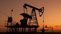 Ham petrol üretiminde artış