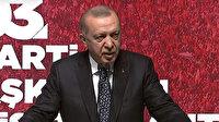Cumhurbaşkanı Erdoğan: Meral Hanım sen 'Zulüm 1453'te başladı' diyenlerle berabersin yolun açık olsun