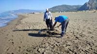 Suriye'den gelen petrol 14 kilometrelik Samandağ sahilini sardı