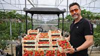 Akıllı tarımla rekoltesini katladı: Rusya, Almanya, Fransa gibi ülkelere ihracat yapıyor