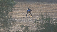 İstanbul'da yol kenarındaki ormanlık alanda dedektörle define aradı