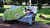 Kimsesiz kadın 3 aydır parkta yatıyor: Düşmanım bile bu duruma düşmesin