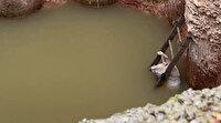 Su dolu çukurda donmak üzereyken bulundu: İtfaiye 15 metrelik çukura inerek kurtardı