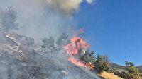 Tunceli'de ağaçlık alanda çıkan yangın ekiplerin müdahalesiyle söndürüldü