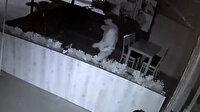 Hırsız 'pes' dedirtti: Önce dükkanın ortasına tuvaletini yaptı sonra kasayı boşalttı