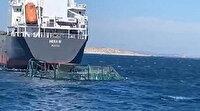 Balık çiftliğindeki havuzlara yük gemisi çarptı: 750 bin balık denize kaçtı
