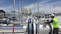 Avrupa'daki gaz sıkıntısıyla ilgili Rusya'dan açıklama: Bizimle ilgisi yok