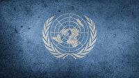 BM: Türkiye'nin Paris İklim Anlaşması'nı onaylamasını memnuniyetle karşılıyoruz
