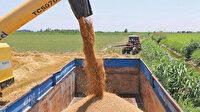 Çiftçiye kuraklık desteği: Dekar başına 100 liraya kadar hibe