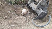 Yol çalışması sırasında dehşete düşüren görüntü: İnsan kemikleri bulundu