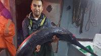 60 yıl sonra boğazda kılıç balığı ağlara takıldı