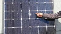 Magandaların son hedefi oldu: Milyonlarca liralık enerji tesisine isabet etti