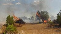 Silifke'de çalılık alanda çıkan yangın ormana sıçradı