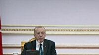 Cumhurbaşkanı Erdoğan: Fransa Afrika'yı bir sömürge kıtası olarak kullanmıştır