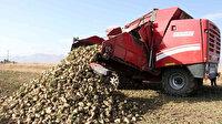 Albayrak Grubu'nun sağladığı teşviklerden üreticiler memnun: Hedef 550 bin ton pancardan 82 bin ton şeker üretimi