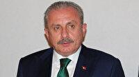 TBMM Başkanı Şentop: Türkiye dünyada tesir gücüne sahip bir ülke