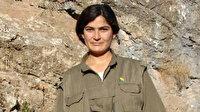 MİT'in Kerkük kırsalında düzenlediği operasyonda PKK'nın sözde yöneticilerinden Taybet Bilen etkisiz hale getirildi